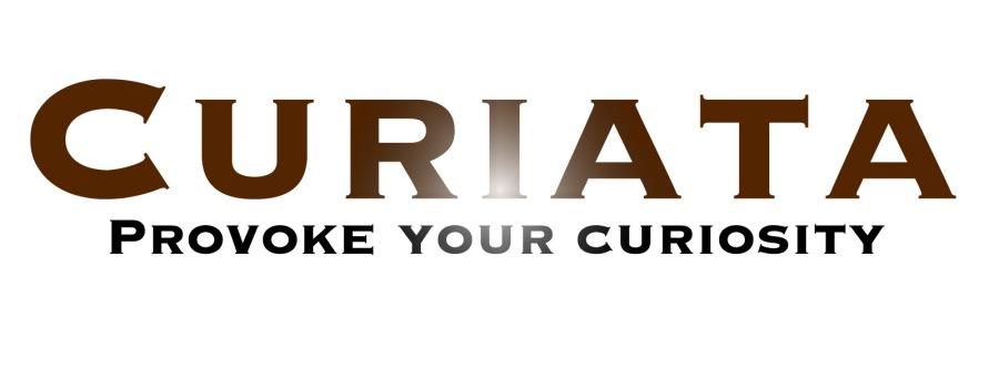 Curiata Provoke Logo Light